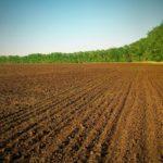 Вспашка целинных земель