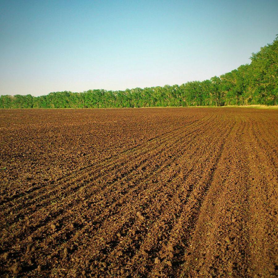 земельное развитие