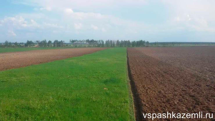 Вспаханное поле в Воронеже