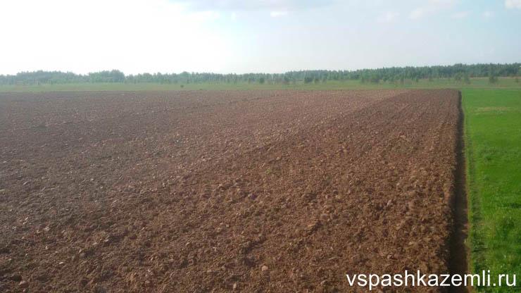 Вспашка поля в Смоленской области