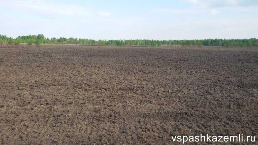 Обработанное поле - лучшая защита от изъятия земли